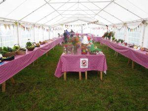 The produce tent ready for judging